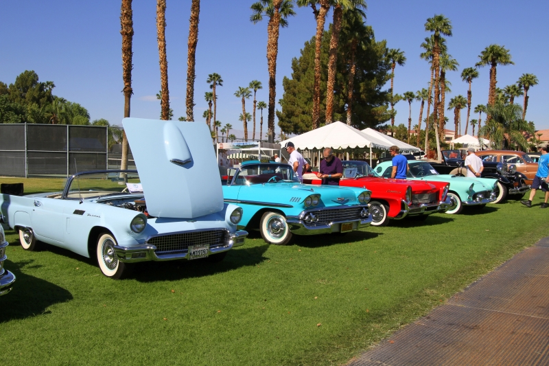 Gay Travel Guide Palm Springs │misterb&b