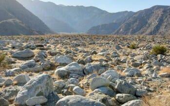 Preserving Chino Canyon