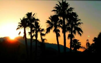 Photo of the Day by CoachellaValley.com