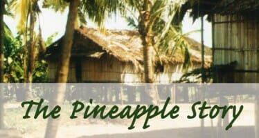 The Pineapple Story