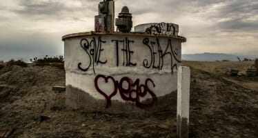Something stinks…it's The Salton Sea