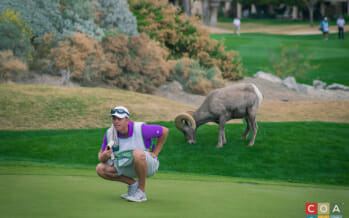 Notable Quotes from Coachella Valley's Humana Challenge