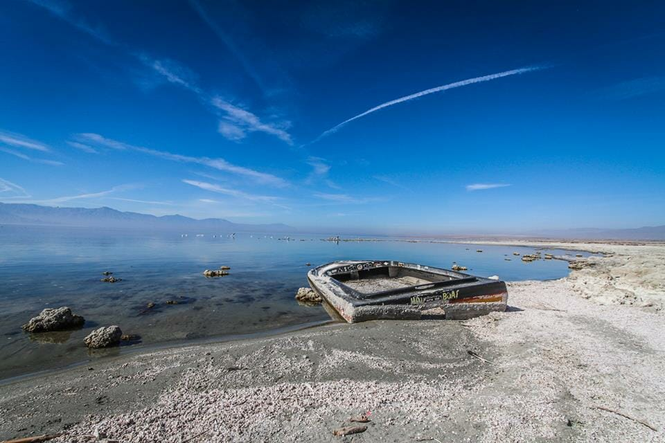 Salton Sea by Jill Hayes