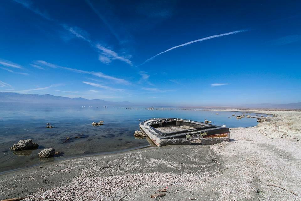 Salton Sea by Jill Hayes