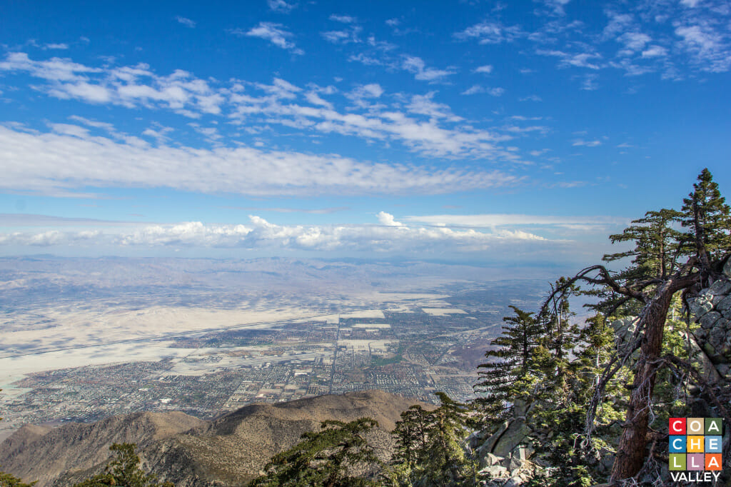 View from Palm Springs Aerial Tram Way by CoachellaValley.com