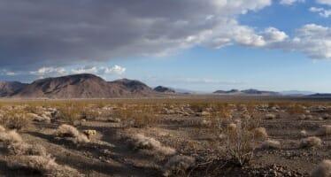 Renewable Energy:  The Worst of the worst: Bechtel's Soda Mountain Solar Project