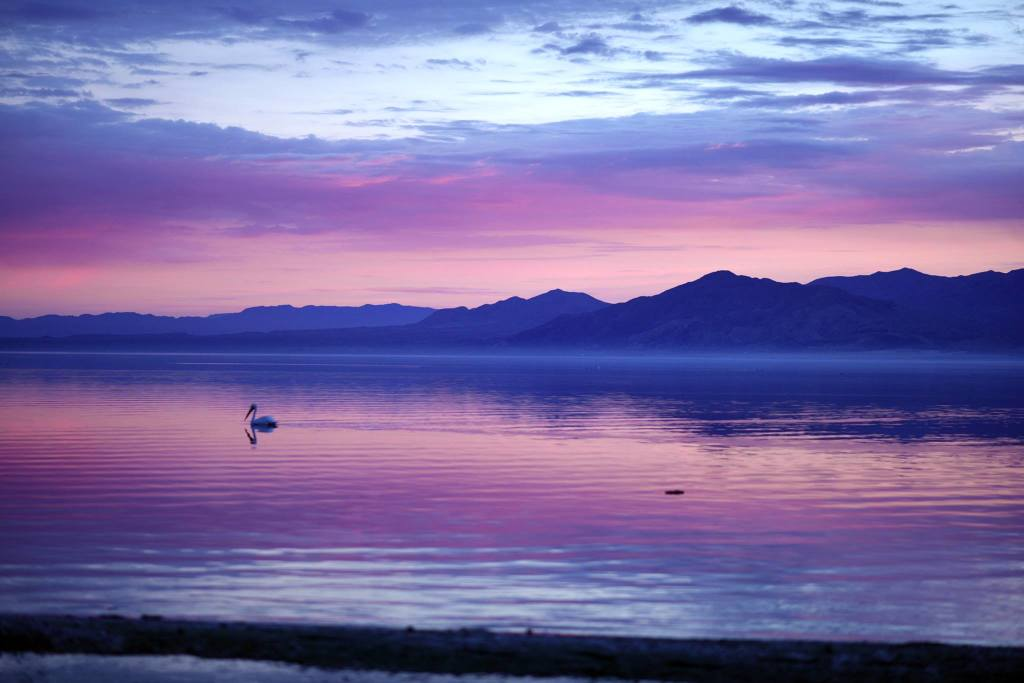 Sunset at the Salton Sea Yesterday! sent in by La Maniaca