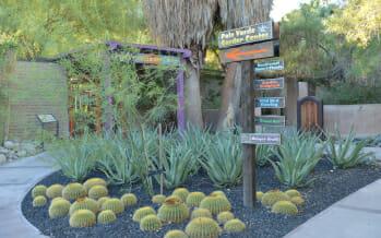 The Living Desert Annual Plant Sale