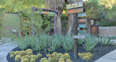 The Living Desert Annual Plant Sale