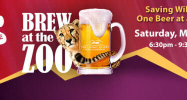 The Living Deserts Brew at the Zoo!