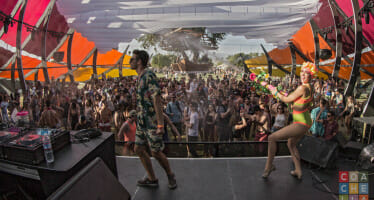 """Musings from a Coachella """"First-timer Over Forty"""""""