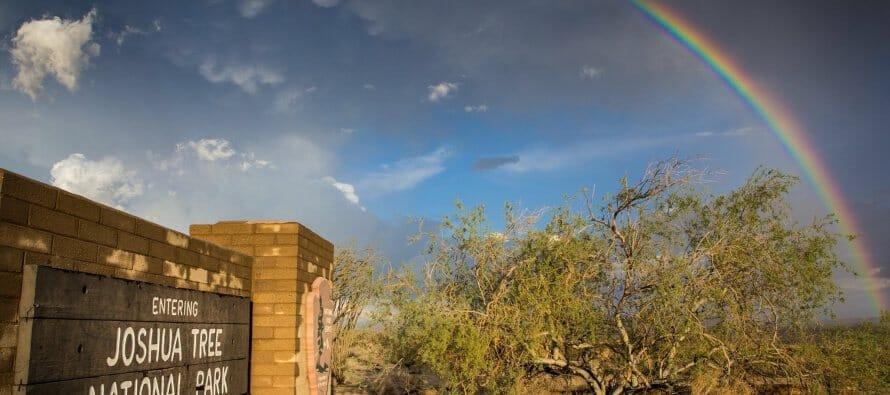 Michelle Caitlyn capturing a perfect Joshua Tree Rainbow