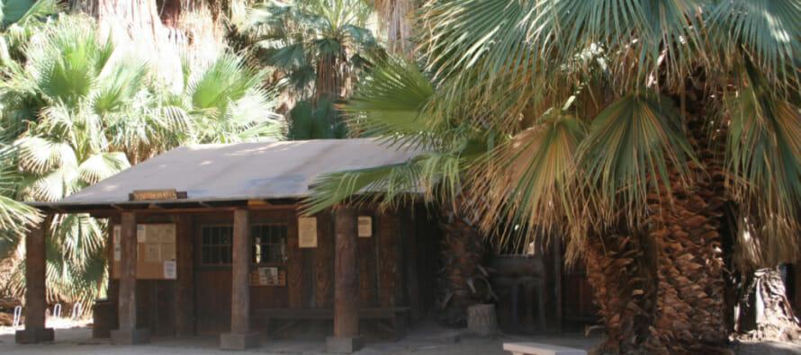 Hike Pushawalla Palms Trail loop