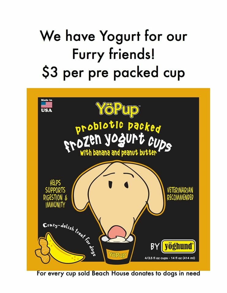 Beach House Yogurt for you and your pup!