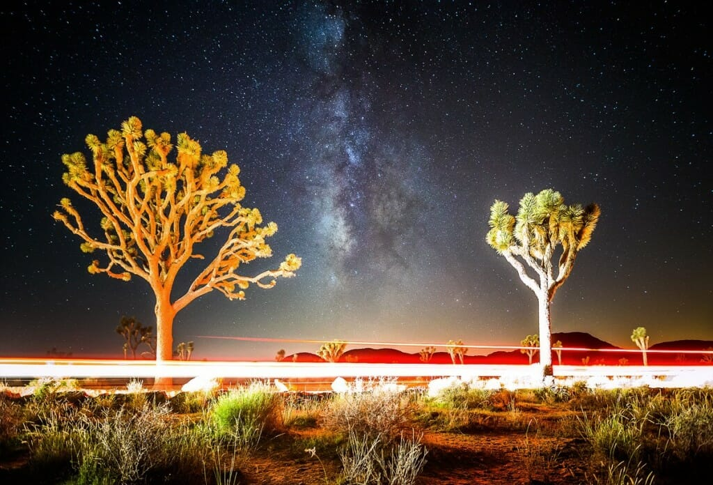 Long Exposure in Joshua Tree by Sean Parker Photography