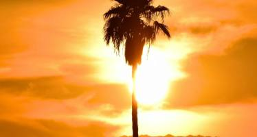 How to Survive Summer in the Coachella Valley
