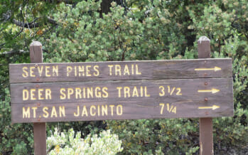Coachella Valley Summer Night Adventures and Hikes at Cooler Elevations