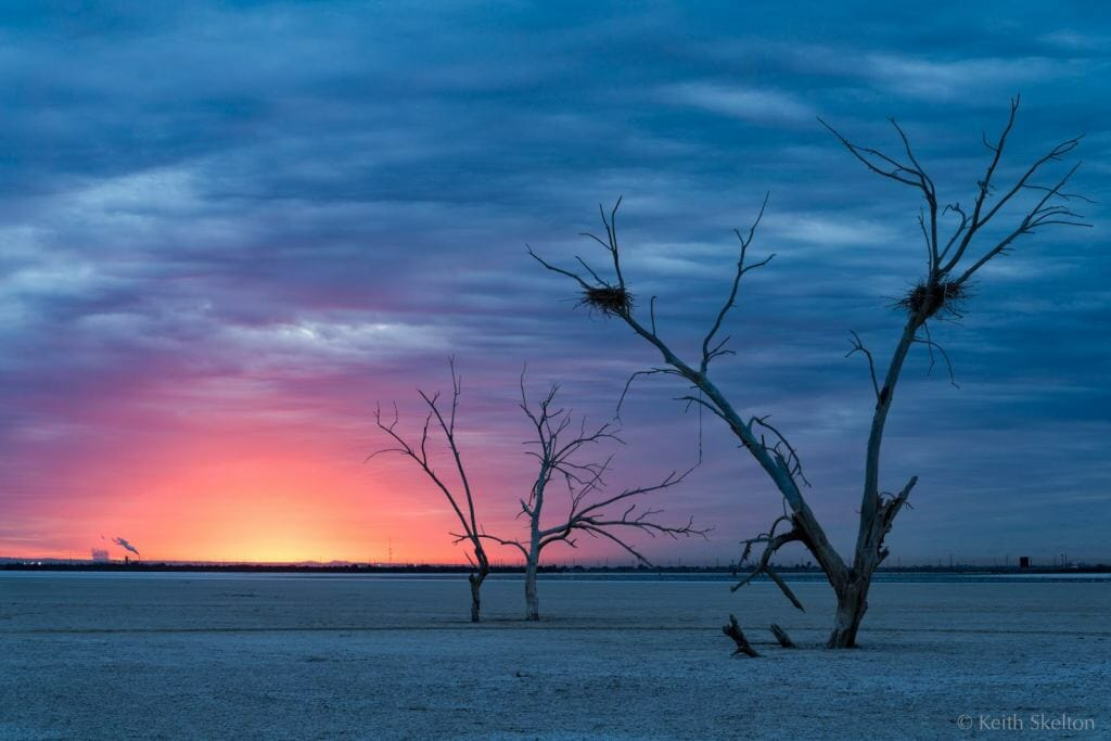 Salton Sea by Keith Douglas Skelton
