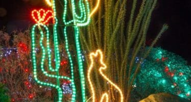 WildLights at The Living Desert – Over one million twinkling lights, dazzling displays, live music, festive games and activities