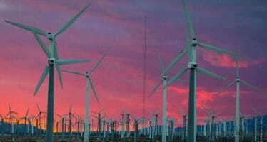 Coachella Valley Photo of the Day! Wind Farm – by Daniel Burr