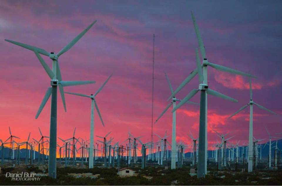 Coachella Valley Photo! Wind Farm - by Daniel Burr