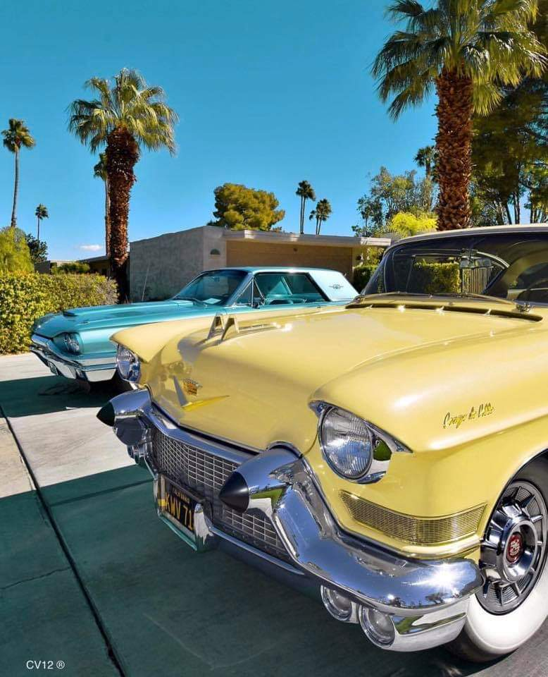 Palm Springs, Coachella Valley Photo of the Day...