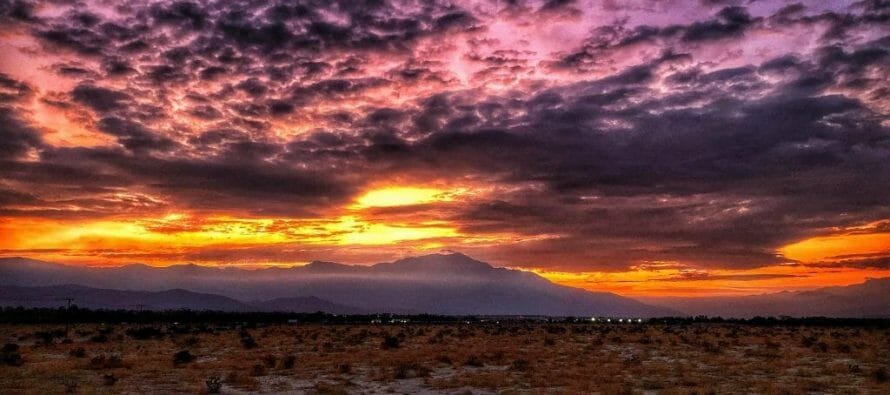Happening Now – Coachella Valley Preserve Sunset – Photo of the Day