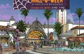 Watch the 2nd Annual Mall-O-Ween's Grand Success – Video