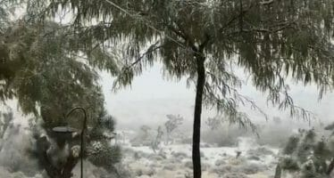 It's snowing in Yucca Valley! 🎥, Thanksgiving Day!