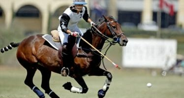 Your Guide to the 2020 Polo Season – Empire Polo Club