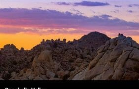 Joshua Tree National Park Reopens To Visitors