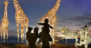The Living Desert Zoo & Gardens remains open, wildlights, hiking trails accessible, gift shop remains open inside.