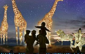 Tickets for The Living Desert Zoo and Garden's WildLights are now on sale!