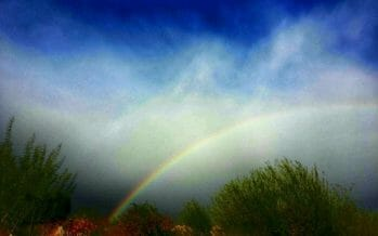 A little rain this morning brings out mother nature's colors in the Desert