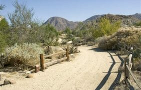 "The Living Desert Zoo and Gardens Reopens as an ""outdoor recreation facility"""