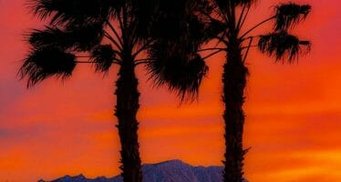 Excessive Heat Warning until 9:00PM Wednesday