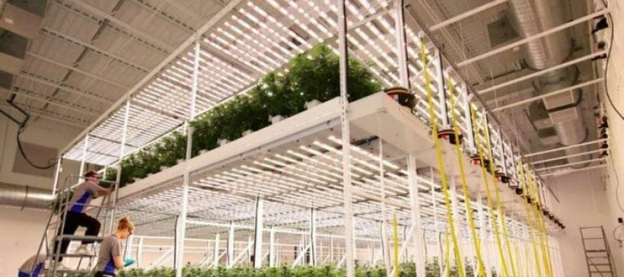 GreenGro Technologies Expects Grand Opening of Cathedral City Dispensary in First Quarter of 2022